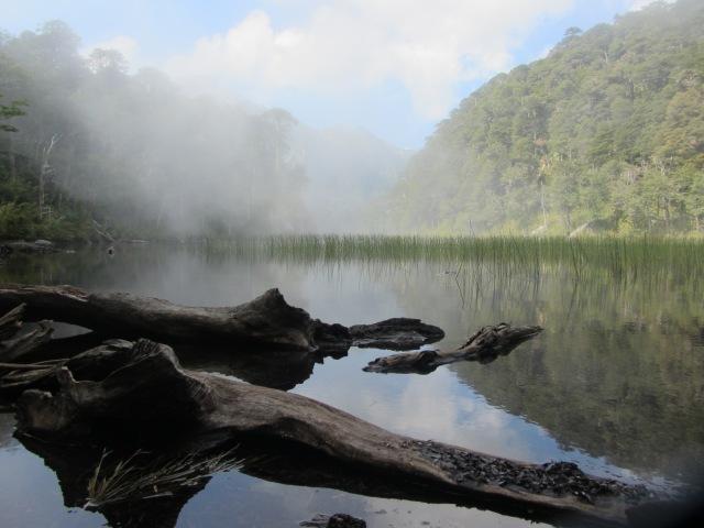 National Park Huerquehue, Chile